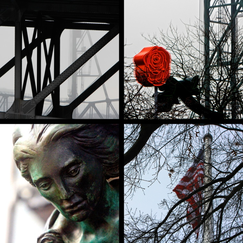 The-City-Rose-Collage5(web)